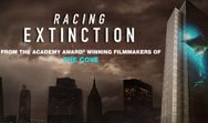 Racing Extinction Filmmakers Launch Historic Projection of Wildlife Images On The  Façade of The Vatican