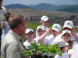 Students Plant Seedlings.
