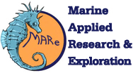 MARE logo Feature Image