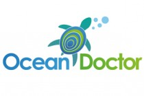 Ocean Doctor and Project Red Alerta clean up beaches of Cocodrilo to keep pristine water clean